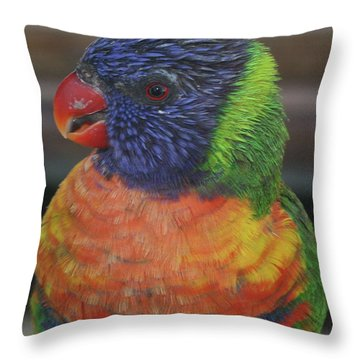 Colored Feathers Throw Pillow
