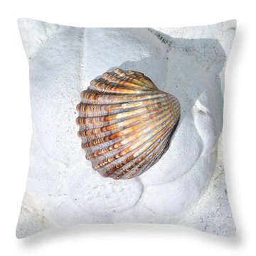 Colored Seashell  Throw Pillow