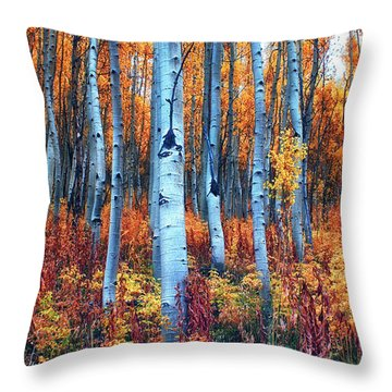 Colorful Aspens Throw Pillow by Brian Kerls