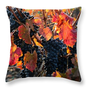 Colorful Autumn Grapes Throw Pillow by Carol Groenen