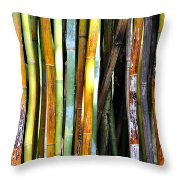 Colorful Bamboo Throw Pillow by Jodi Terracina