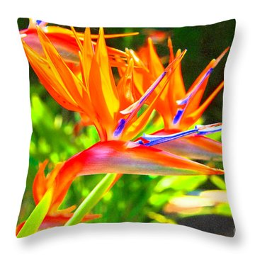 Colorful Birds Of Paradise Throw Pillow