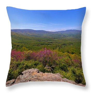 Colorful Blue Ridge Spring Throw Pillow