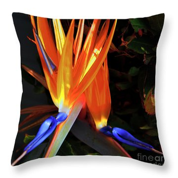 Throw Pillow featuring the photograph Colorful California Morning by Clayton Bruster