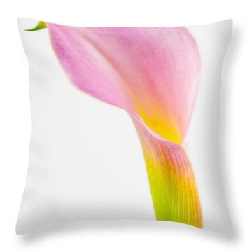 Colorful Calla Lily Flower Throw Pillow