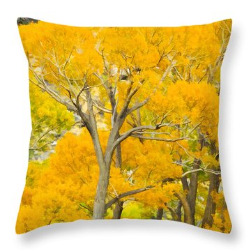 Colorful Canopy Throw Pillow