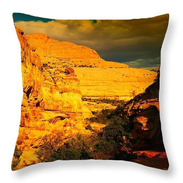 Colorful Capital Reef Throw Pillow by Jeff Swan