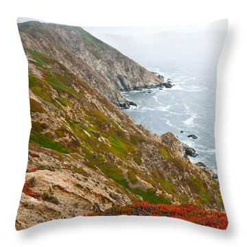 Throw Pillow featuring the photograph Colorful Cliffs At Point Reyes by Jeff Goulden