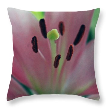 Colorful Detailed Throw Pillow