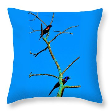 Colorful Duet Throw Pillow by Zafer Gurel