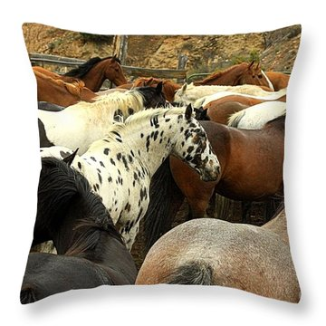 Colorful Horses Throw Pillow