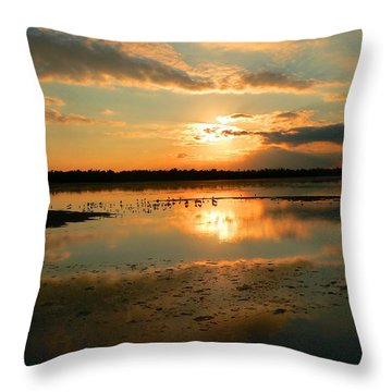 Throw Pillow featuring the photograph Colorful Light by Rosalie Scanlon