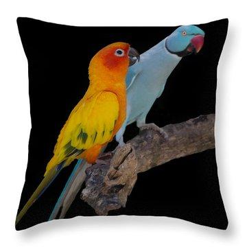 Sun Conure And Ring Neck Parakeet Throw Pillow