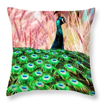 Throw Pillow featuring the photograph Colorful Peacock by Matt Harang