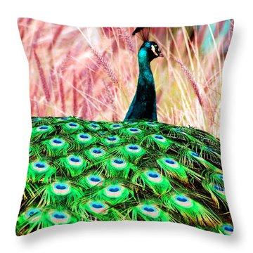 Colorful Peacock Throw Pillow by Matt Harang