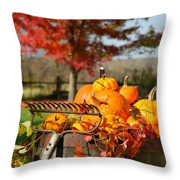 Colorful Pumpkins And Gourds Throw Pillow by Sandra Cunningham