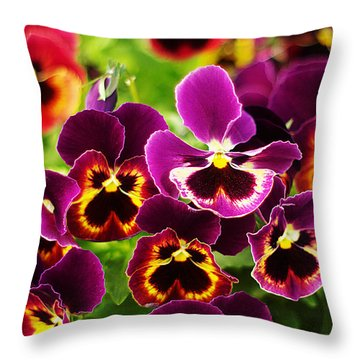 Throw Pillow featuring the photograph Colorful Purple Pansies by Suzanne Powers
