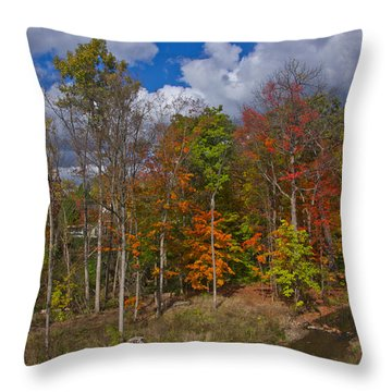 Colorful Ravine A Wider Angle Throw Pillow