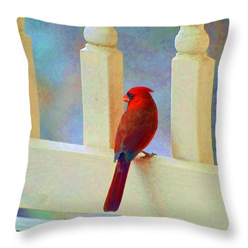 Colorful Redbird Throw Pillow by Kenny Francis