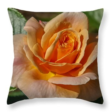 Colorful Rose Throw Pillow by Jane Luxton