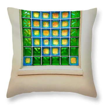 Colorful Savannah Window Throw Pillow