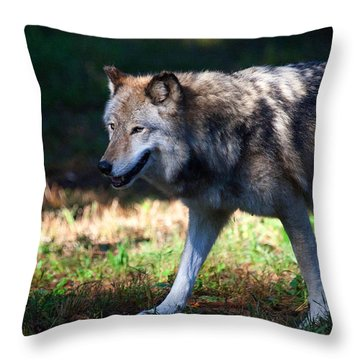 Colorful Wolf Throw Pillow by Karol Livote