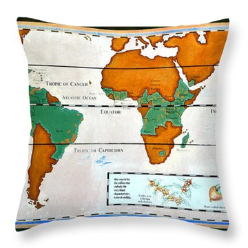 Colorful World Map Of Coffee Throw Pillow