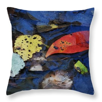 Colors A Drift Throw Pillow