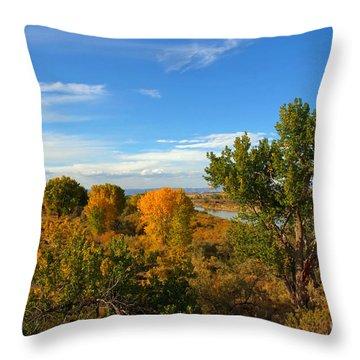 Colors Along The Colorado Throw Pillow by Bob Hislop