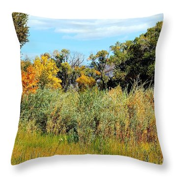 Colors Along The Gunnison Throw Pillow by Bob Hislop