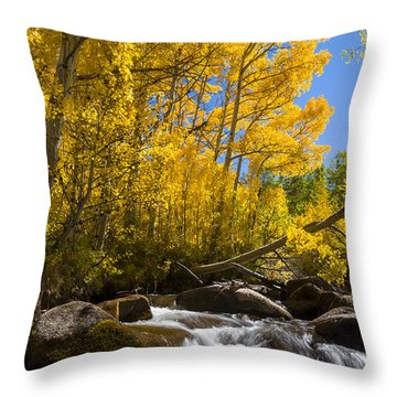 Colors And The Cascades Of South Fork Bishop Creek Throw Pillow by Joe Doherty
