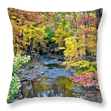 Colors Galore Throw Pillow by Frozen in Time Fine Art Photography