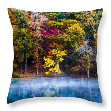 Colors In Early Morning Fog Throw Pillow