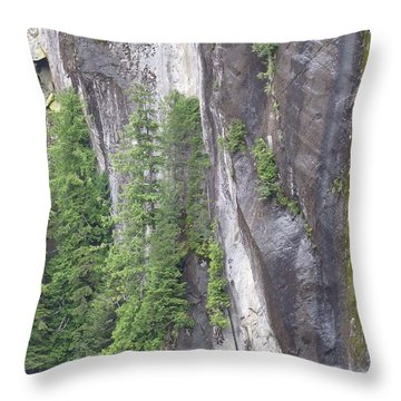 Colors Of Alaska - More From Misty Fjords Throw Pillow