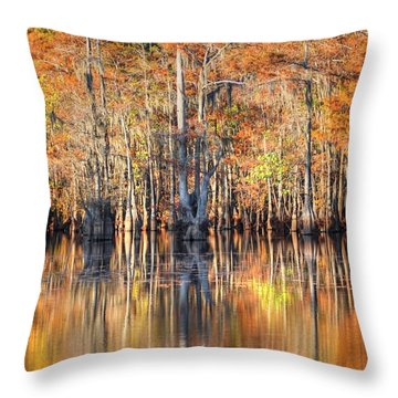 Colors Of Autumn Throw Pillow by Ester  Rogers