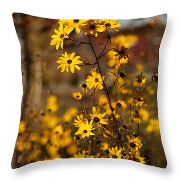 Colors Of Autumn Throw Pillow by Sabrina L Ryan