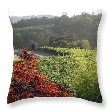 Colors Of Cali Throw Pillow