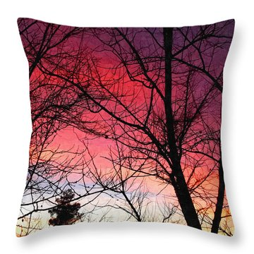 Colors Of Dusk Throw Pillow