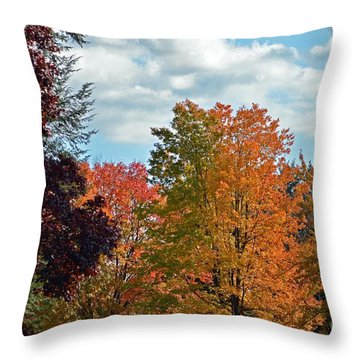 Colors Of Fall Throw Pillow by Judy Wolinsky