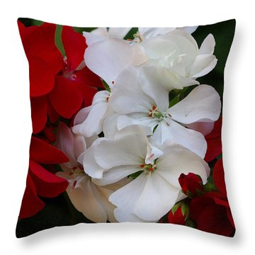 Colors Of Flowers Throw Pillow by James C Thomas