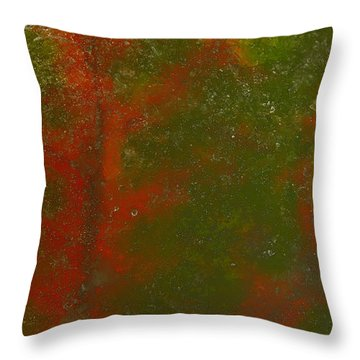 Colors Of Nature 12 Throw Pillow