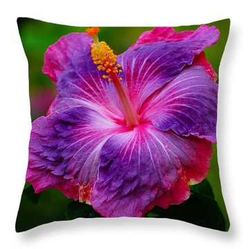 Colors Of Paradise Throw Pillow