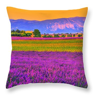 Colors Of Provence Throw Pillow by Midori Chan
