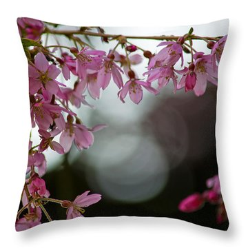 Throw Pillow featuring the photograph Colors Of Spring - Cherry Blossoms by Jordan Blackstone