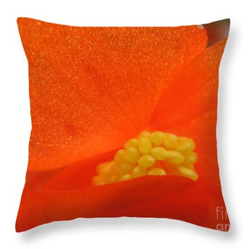 Colors Of The Sun Throw Pillow by Patti Whitten