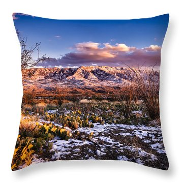 Colors Of Winter Throw Pillow by Mark Myhaver