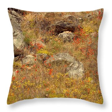 Colors Through The Rocks Throw Pillow