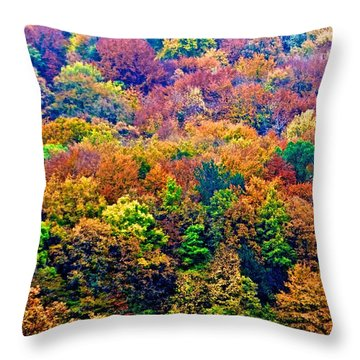 Colors To Winter 2 Throw Pillow