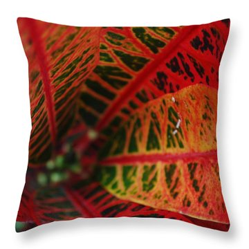 Colors1 Throw Pillow