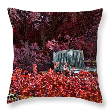Colorspace Throw Pillow by Douglas Barnard